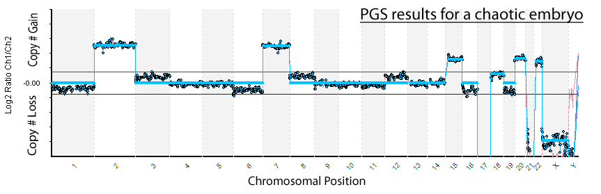 PGD results - chaotic embryo